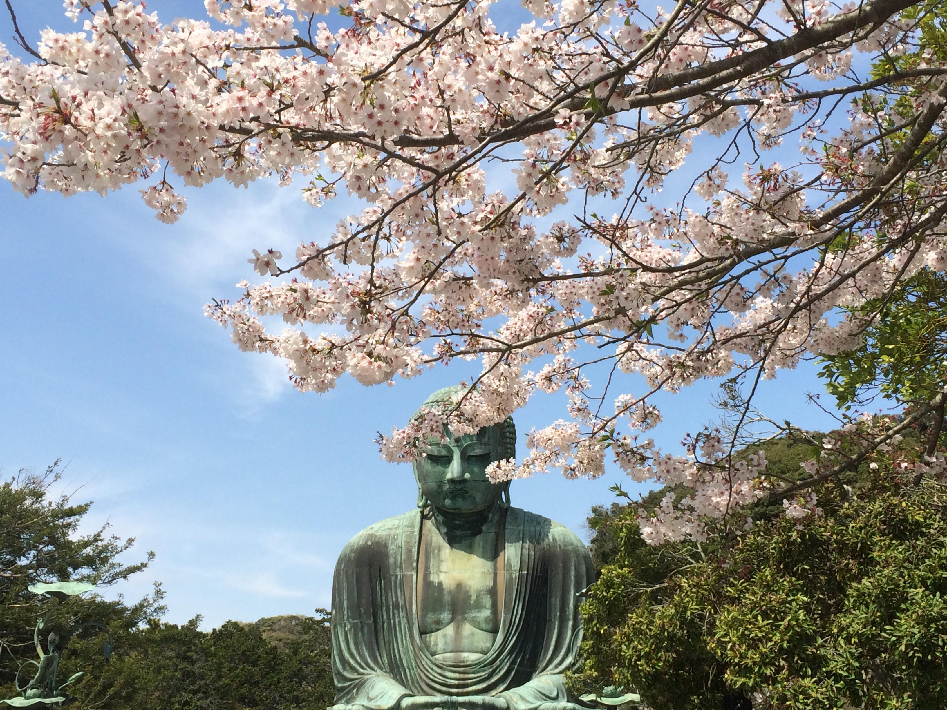 Kamakura dating
